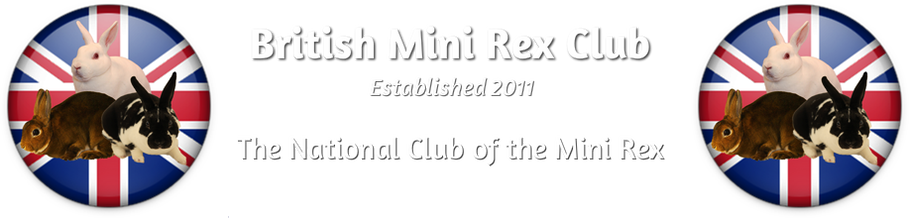 British Mini Rex Club
